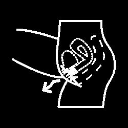 راهنمای استفاده از کاپ قاعدگی لیوا